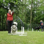 2015-05-23_Bosco_hooperen_5